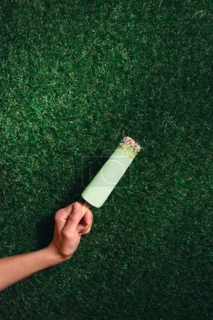 Delicious popsicle in hand on green grass background