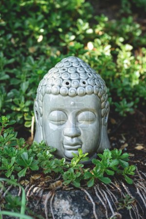 Buddha head on stone with green plants around in summer