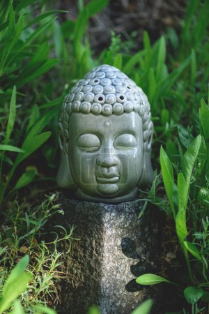 close up of Buddha head on stone with green plants around
