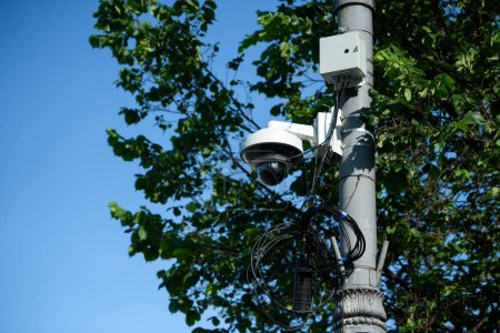 close up view of security camera on street pole with tree foliage in sunlight