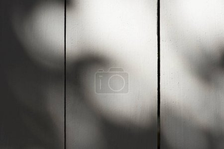 full frame image of wooden planks with sunlight background