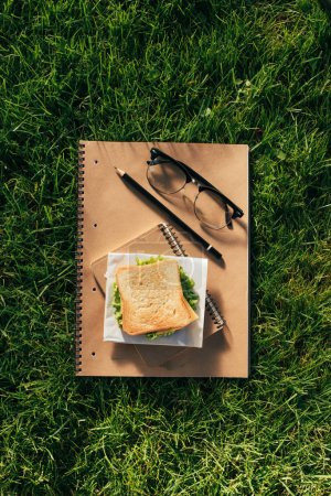 top view of arranged notebooks, eyeglasses and sandwich on green grass