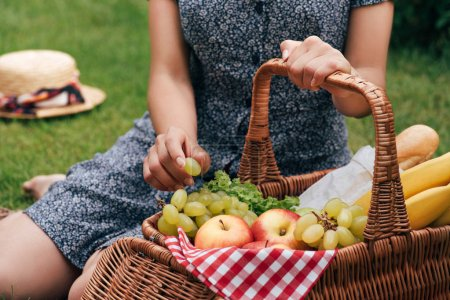 cropped image of woman sitting on green grass and taking grapes at picnic