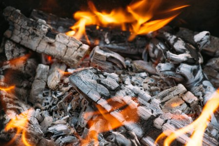 close up of bonfire with flame and firewood outdoors