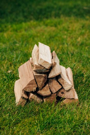 pile of firewood on green grass in park