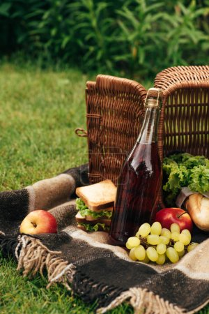 flipped over basket with fruits and bottle of champagne on blanket in park
