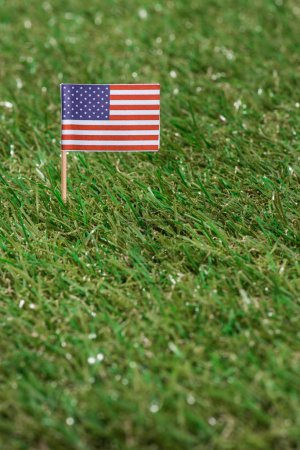close up view of american flagpole on green grass