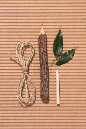 top view of string, wooden pencil, graphite pencil and green leaves on cardboard