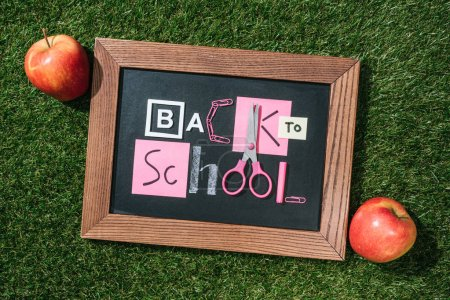 top view of fresh apples and blackboard with back to school lettering made of pink and white objects on green lawn