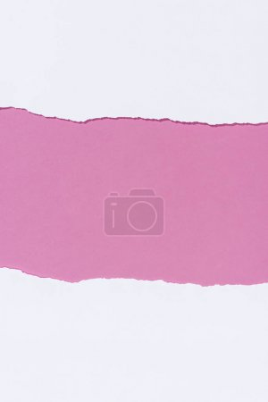 top view of torn empty white paper on pink