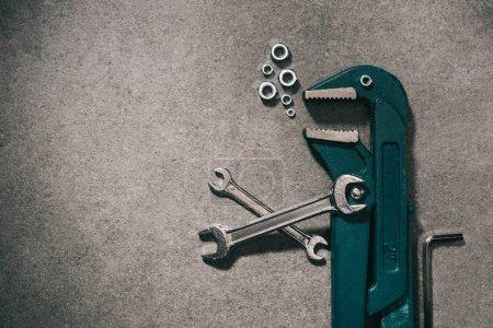 Photo pour Vue de dessus de l'animal en outils mécaniques sur plateau gris - image libre de droit