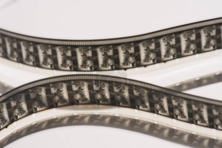 Photo for Close up view of retro filmstrips on white background - Royalty Free Image