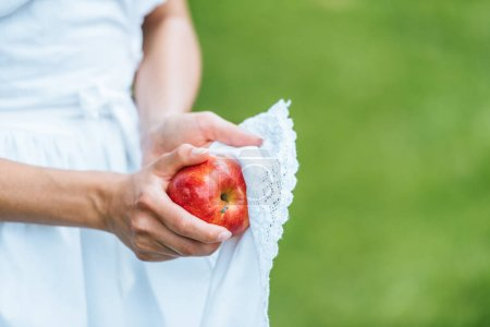 cropped view of girl wiping red apple with apron
