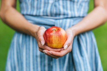 partial view of girl holding one ripe apple in hands