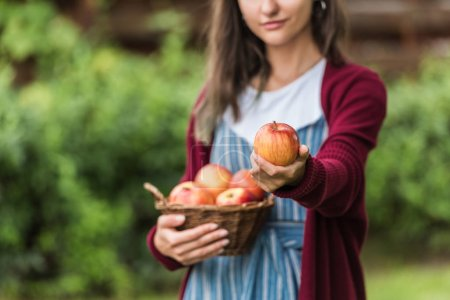 cropped view of girl holding wicker basket with apples