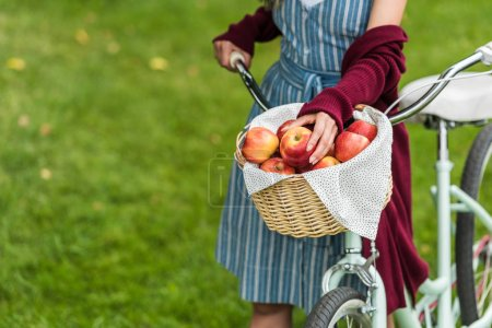 cropped view of girl with wicker basket full of fresh apples on bike