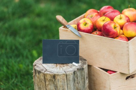 fresh picked apples in boxes with empty card for sale