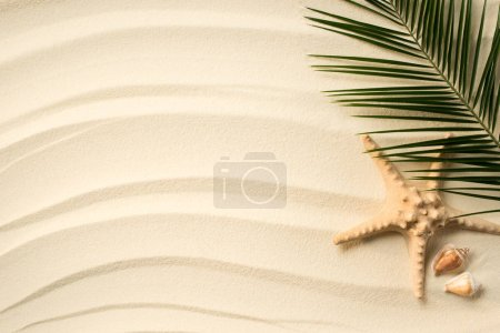 top view of arranged palm leaf, seashells and sea star on sandy surface