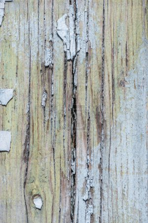 close-up view of old wooden background with weathered scratched paint
