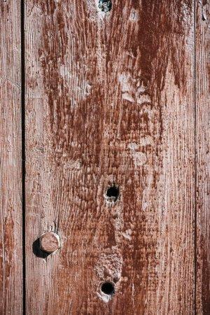 vue rapprochée tanné des vieux fond de clôture en bois