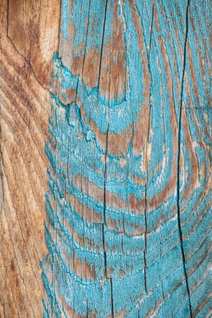 Photo pour Vue rapprochée de l'arrière-plan en bois vieilli avec peinture bleue altérée - image libre de droit