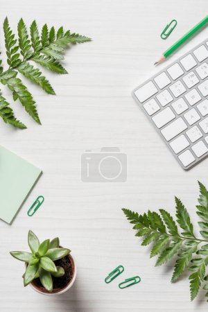 top view of fern leaves, stationery and computer keyboard on table