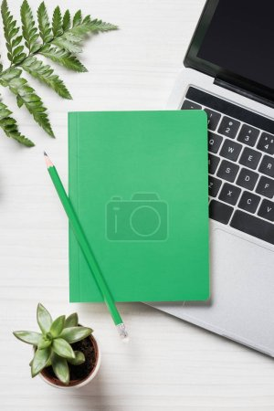 top view of green pencil and textbook, laptop and plant on table