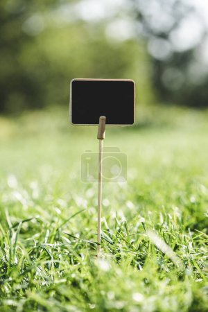 empty wooden board on stick in green grass