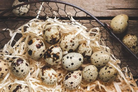 top view of organic quail eggs in shavings on wooden table