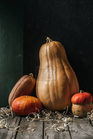 close up view of food composition with pumpkins arranged on wooden surface on dark background