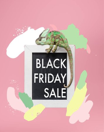 beautiful bright green chameleon on blackboard in white frame isolated on pink with black friday sale