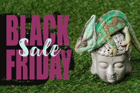 beautiful bright green chameleon sitting on Buddha head with black friday sale