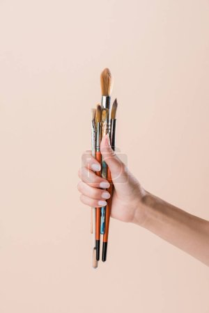 cropped shot of woman holding bunch of paint brushes isolated on beige