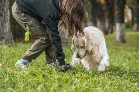 Photo pour Jeune femme nettoyage après le chien dans le parc - image libre de droit