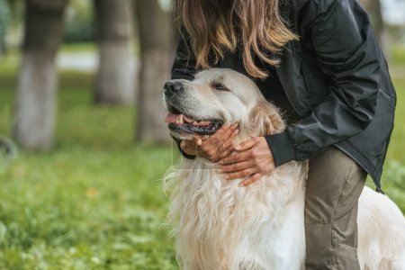 cropped shot of girl hugging cute funny dog in park