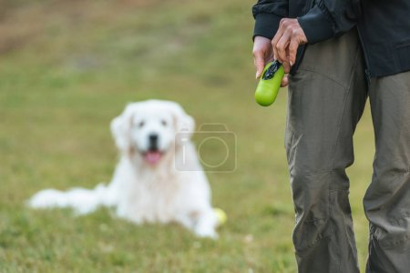 partial view of girl holding bag for cleaning after pet in park