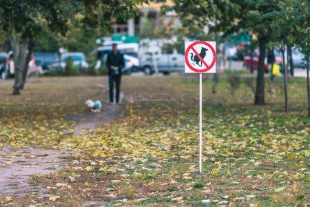 No dog poop sign in autumn park