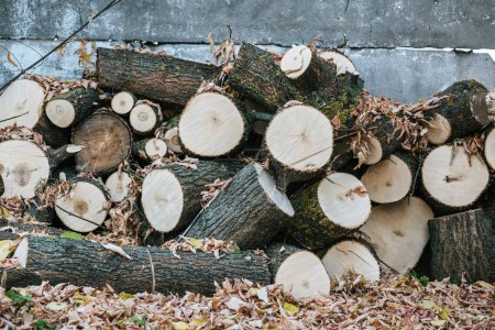 pile of chopped firewood with autumnal leaves near fence