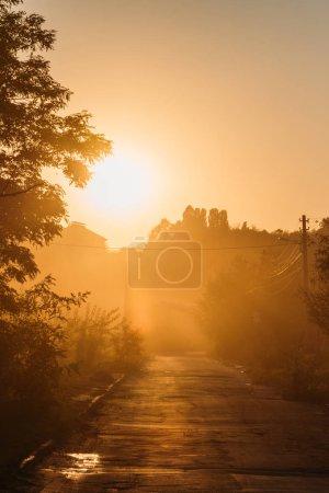 beautiful orange sunrise above trees and road