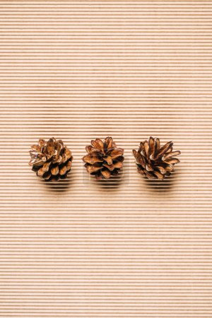 top view of three pine cones on the textured background