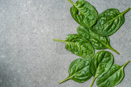 Top view of green fresh spinach leaves