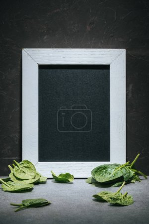 Blank board in white frame with fresh picked spinach leaves
