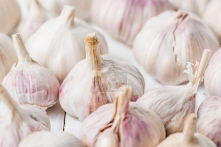Photo for Ripe garlic bulbs on white kitchen table - Royalty Free Image