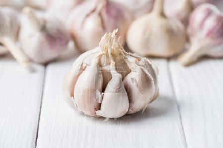 Photo for Ripe garlic bulb with cloves on white rustic table - Royalty Free Image