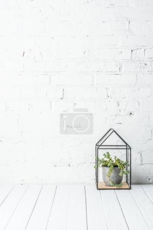 Photo for Plant in pot on rustic wooden table near white brick wall - Royalty Free Image