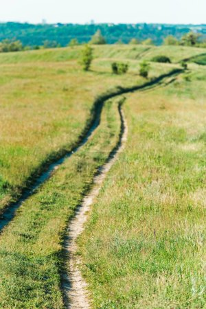 scenic view of rural landscape with path through grassy meadow