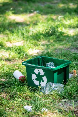 recycling box and plastic trash on green lawn