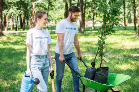 couple of volunteers planting trees in park together