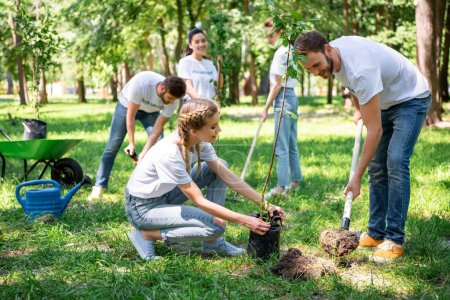 volunteers planting tree in green park together