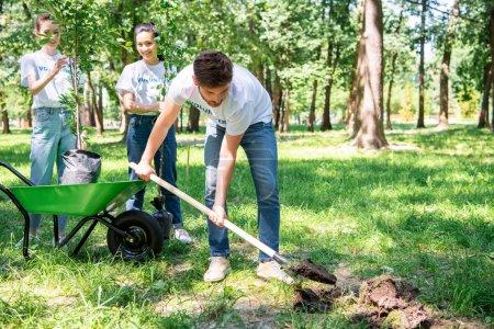 volunteers planting tree in green park